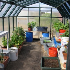 Indoor Greenhouse Construction 101