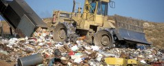 Waste Not Want Not: Reducing Your Waste