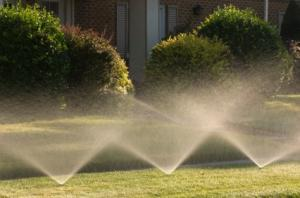 How to Choose the Right Irrigation System for Your Lawn